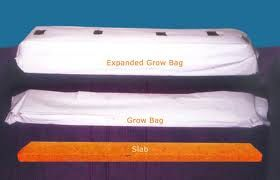 hydroponics_grow_bags2
